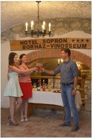 Weinstube / Bierstube, Hotel Sopron, Sopron