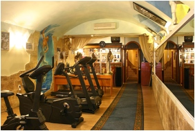 Hotel Swing City - Budapest, Fitnessraum