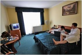 Hotel Viktória, Franciaágyas szoba - Sárvár