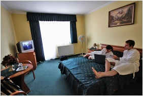 Hotel Viktoria, Camera matrimoniale - Sarvar