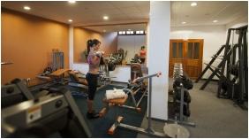 Fitness room - Hotel Villa Volgy