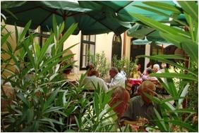 Hotel Wollner - Sopron, Terrace