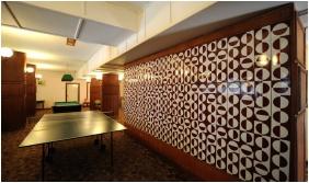 Hunguest Hotel Hoforras, Table tenis