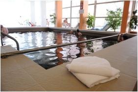 Hunguest Hotel Hoforras, Inside pool
