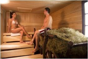 Sauna - İmola Hotel Platan