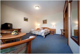 Kehida Thermal Hotel, Kehidakustany, Twin room