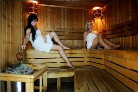 Két Korona Konferencia & Wellness Hotel, Balatonszárszó, Finnszauna