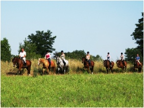 Kincsem Wellness Hotel, Horse riding - Kisber