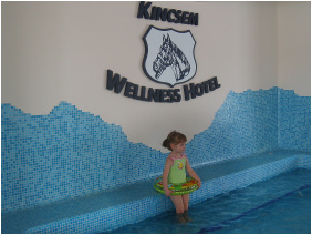 Kincsem Wellness Hotel,  - Kisbér