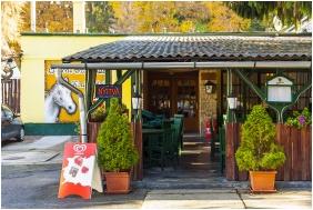 Restaurant - Hotel Lipicai