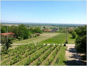 Szent Orban Pension, View to the garden