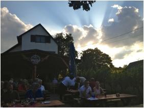 Wine tavern / Pub - Szent Orban Pension