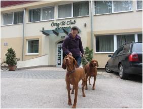 Oreg-to Club Hotel, Tata, Family apartment