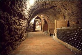 Wine tasting - Oroszlanos Wine Restaurant & Hotel
