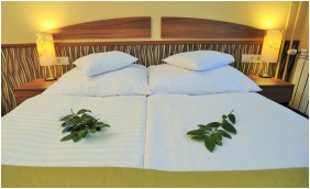 Park Hotel Gyula, Gyula, Double room