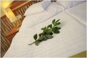 Park Hotel Gyula, Franciaágyas szoba