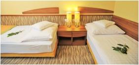 Kétágyas szoba, Park Hotel Gyula, Gyula
