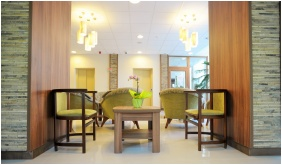 Lobby - Park Hotel Gyula