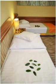 Park Hotel Gyula, Gyula, Twin room