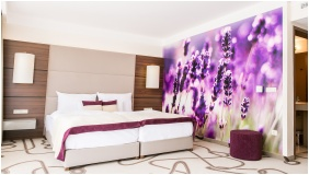 Ambient Hotel & AromaSPA Sikonda, Superior room