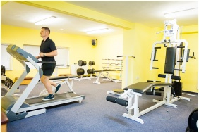 Fitness room, SunGarden Wellness & Conference Hotel, Siofok