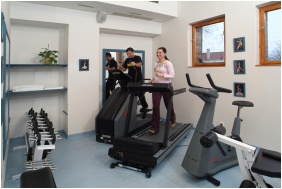 Fitness room, Hotel Szarcsa, Szekesfehervar