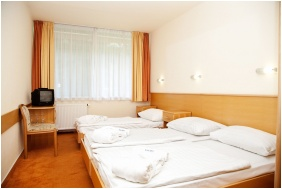 Thermal Hotel Harkany, Standard room