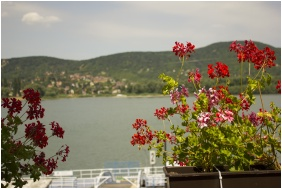 Panorama with Danube View, Castle Hotel Var, Visegrad