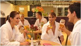 Hotel Velence Resort & Spa, Velence, Bar