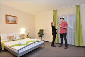 Wellness Hotel Viktória, Franciaágyas szoba