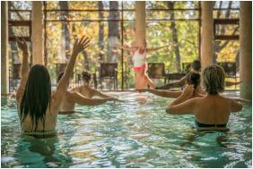 Wellness Hotel Gyula, Aqua fitness