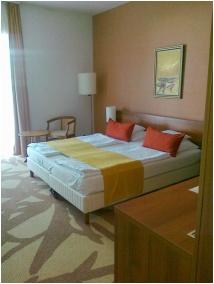 Zenit Hotel Balaton, Vonyarcvashegy, Szauna