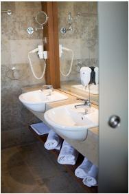 Zenıt Hotel Balaton, Vonyarcvasheğy, Luxury Suıte